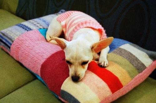 Лежанка для собаки из старых свитеров