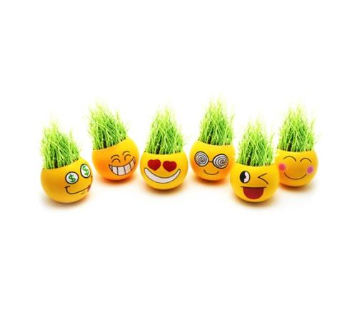 Горшки для растений - смайлики (илл.)