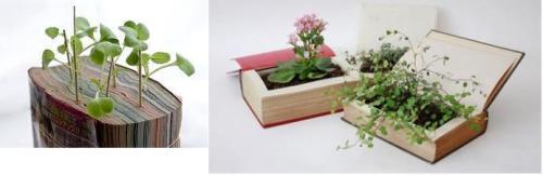 Цветочные горшки из книг (илл.)